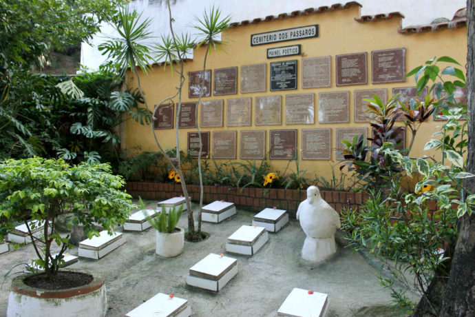cemitério de pássaros