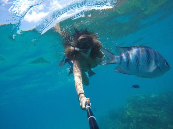 snorkeling em noronha
