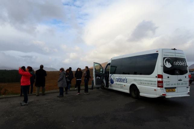 tour com a rabbies