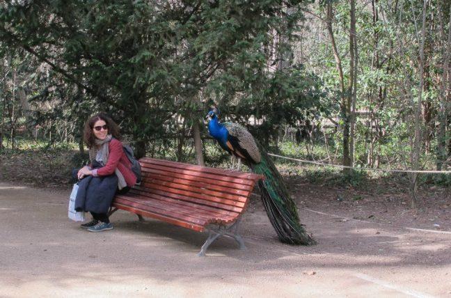 sentada em parque durante mestrado em valladolid, na Espanha