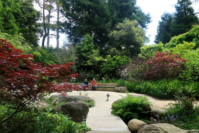 plantas no golden gate park em são francisco