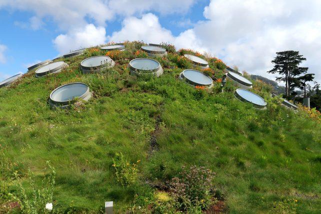 telhado verde do museu de ciências