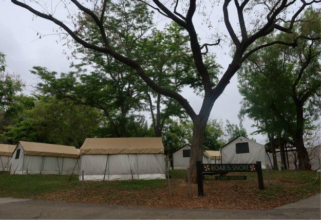 acampamento no safari park