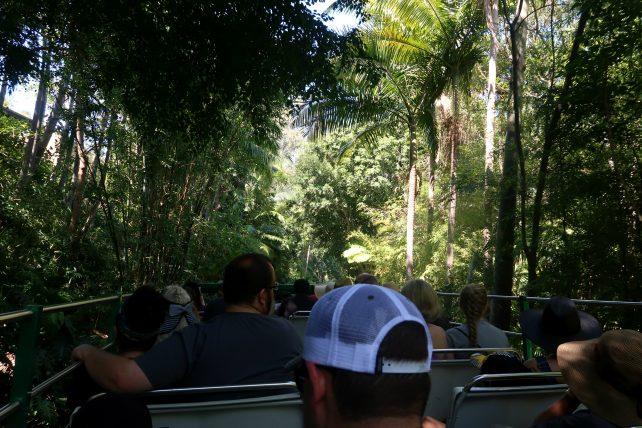 ônibus no zoológico de san diego