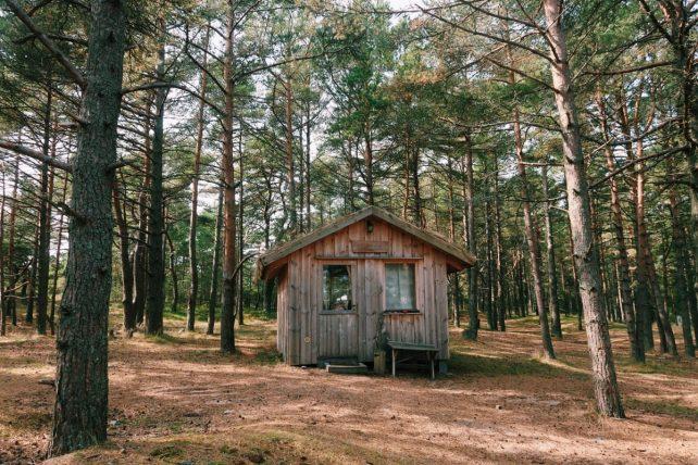 casa para aluguel no bosque em prangli