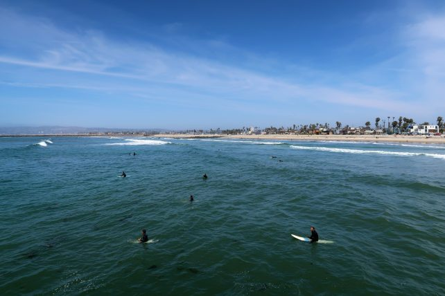 surfistas na praia em san diego