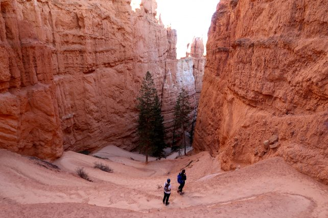 trilha no bryce canyon