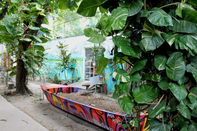 arte nas duas da ilha da gigoia