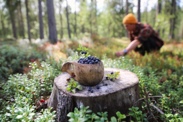 foto: Business Finland