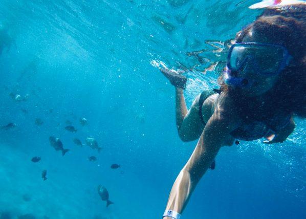 snorkeling em west view