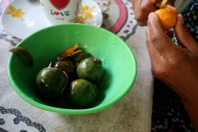 comida na amazônia