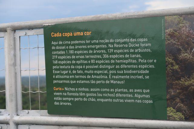 musa museu da amazônia