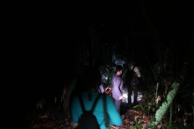 caminhada noturna